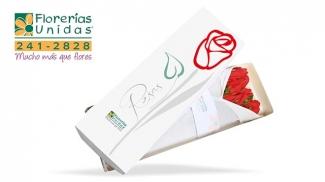 FLORERÍAS UNIDAS Hogar P. Servicios