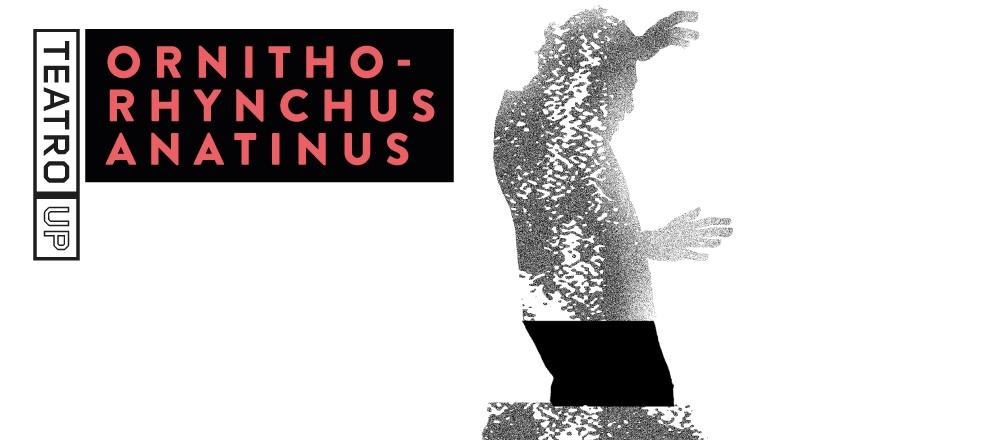 ORNITHORHYNCHUS ANATINUS - Teleticket - Club De Suscriptores El Comercio Perú.