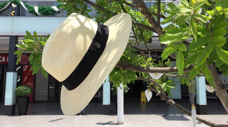 PANAMA HATS - PANAMA HATS